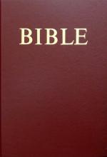 Bible (CZ)